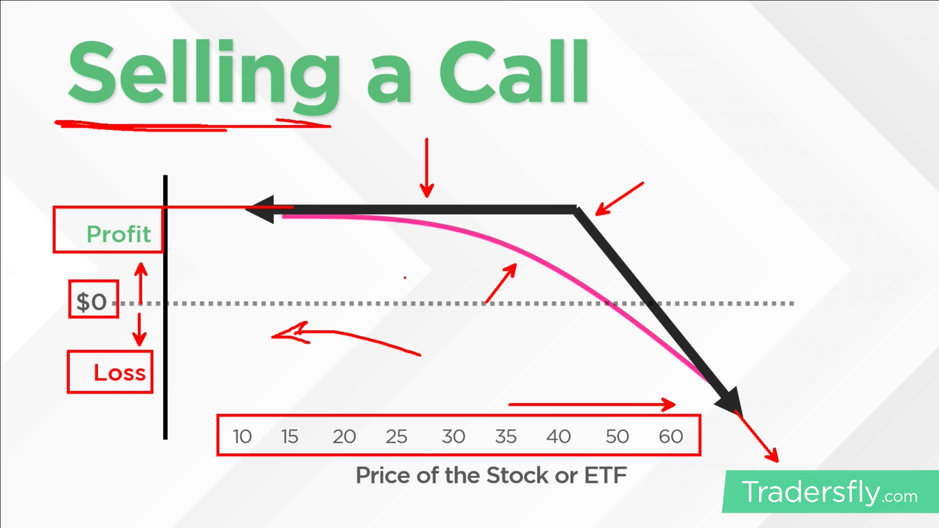 Puts vs. Calls in Options Trading: What's the Difference? • Benzinga